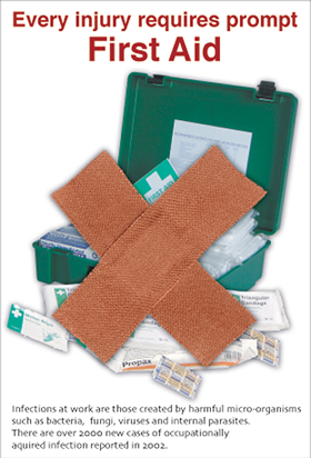 Every injury requires first aid encapsulated poster sign.